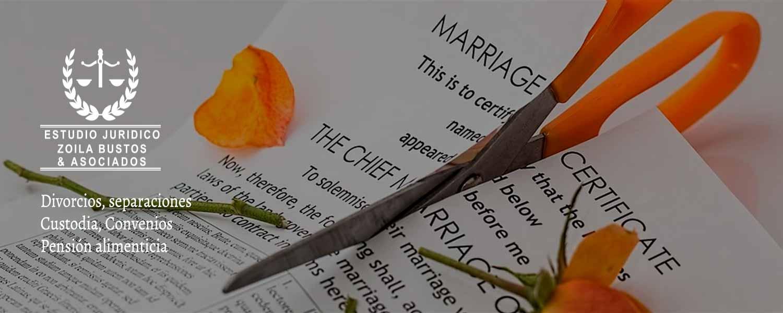 Divorcios, Separaciones, Custodia, Convenios, Pensión alimenticia